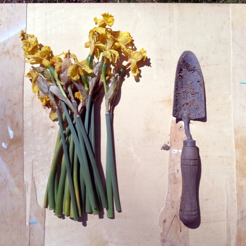 flowers_trowel-LOW