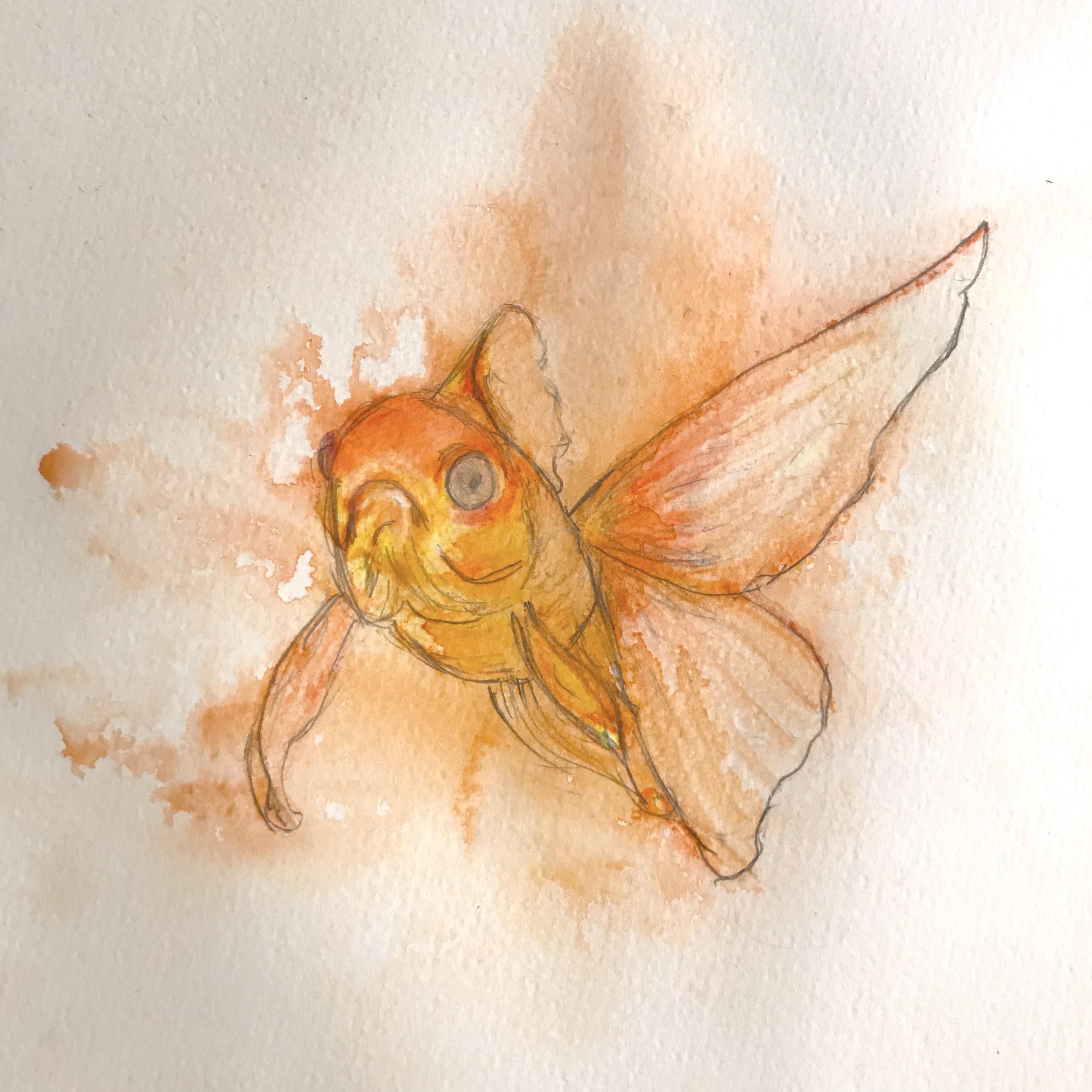 goldfish watercolor 1