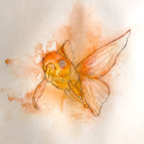 goldfish watercolor 1