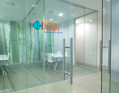business door 1